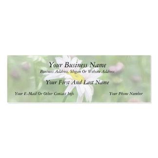 Pyrethrum Daisies -  Tanacetum coccineum Mini Business Card