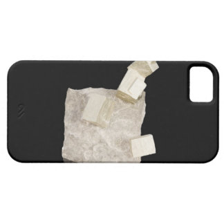 Pyrite Crystals in Shale iPhone SE/5/5s Case