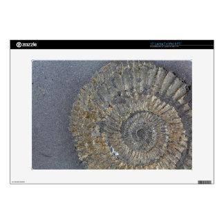 "Pyritized Ammonite 15"" Laptop Skin"