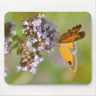 Pyronia butterfly on flower mouse pad