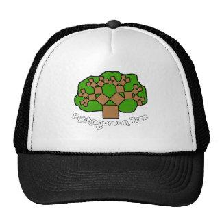 Pythagorean Tree Trucker Hat
