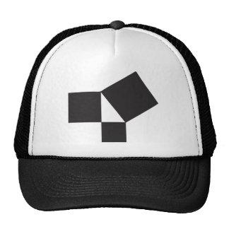 pythagorian thoerem trucker hat