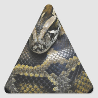 """""""Python"""" design gifts and products Triangle Sticker"""