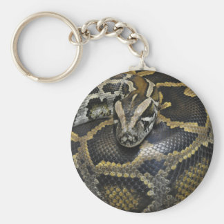 """Python"" design jewelry set Key Chain"