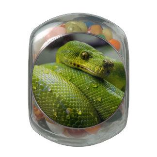 Python Glass Jars