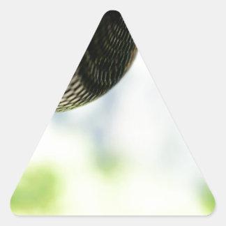 Python Just Hanging Triangle Sticker