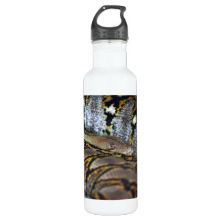 Python photo stainless steel water bottle