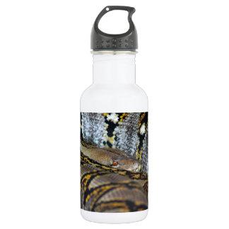 Python photo water bottle