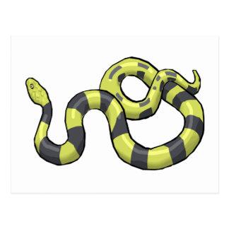 Python Snake Postcard