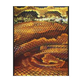 Python Snakeskin Canvas Print