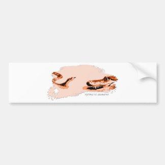 Python vs Alligator orange 01 Bumper Sticker