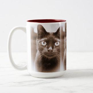 Pywacket Potrait I Mug
