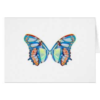pyxie photography wings logo card