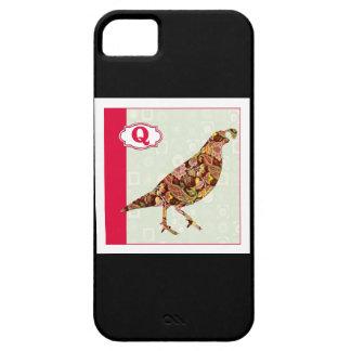 Q está para las codornices iPhone 5 carcasa