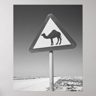 Qatar, Al Zubarah. Camel Crossing Sign-Road to Poster