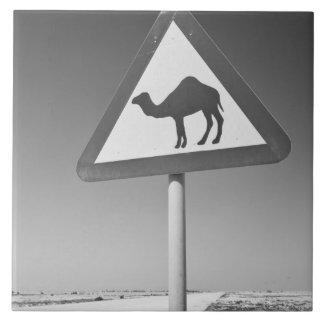 Qatar, Al Zubarah. Muestra-Camino de la travesía d Azulejo Cuadrado Grande