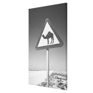 Qatar, Al Zubarah. Muestra-Camino de la travesía d Lienzo Envuelto Para Galerias
