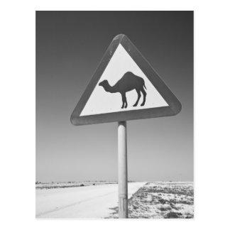 Qatar Al Zubarah Muestra-Camino de la travesía d Postal