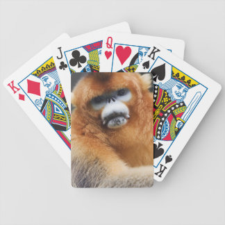 Qinling Mountains Bicycle Playing Cards