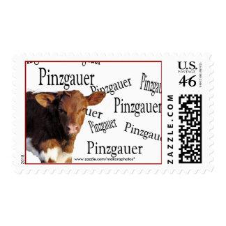 QllaPinzPinz-Stamp