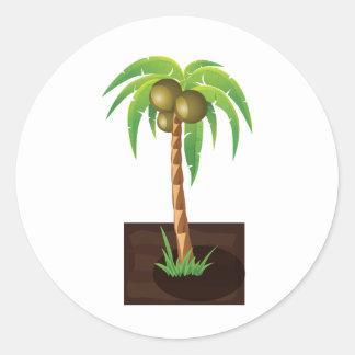QPC coconut tree Classic Round Sticker