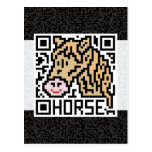 QR Code the Horse Postcard