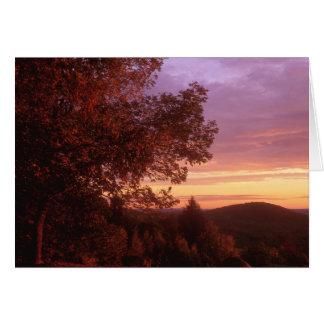 Quabbin Forest Dawn Card
