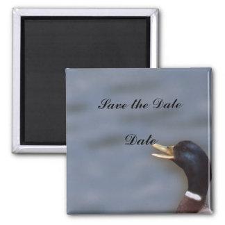 Quack up 2 inch square magnet