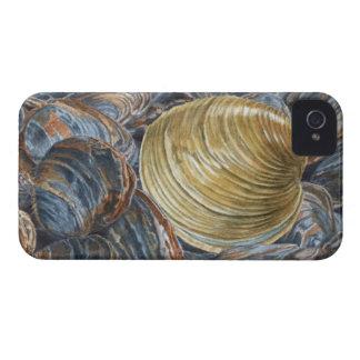 Quahog and Clams iPhone 4 Cover