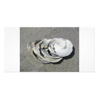 Quahog Shells on the beach Personalized Photo Card