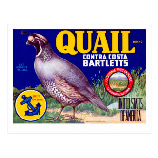 Quail Brand Contra Costa Bartletts Postcard