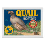 Quail Brand Contra Costa Bartletts Poster
