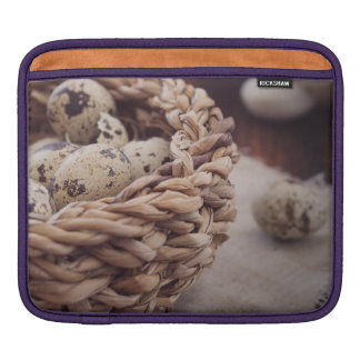 Quail Eggs in Nest Sleeves For iPads