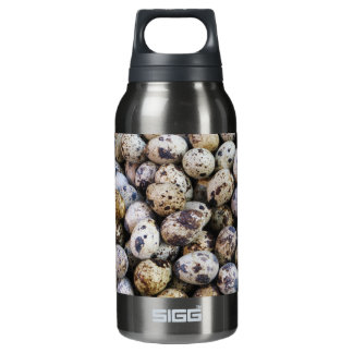 Quail Eggs Insulated Water Bottle