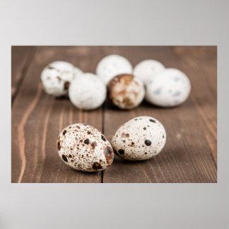Quail eggs print