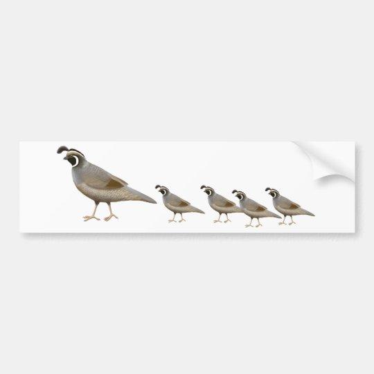 Quail Family Bumper Sticker