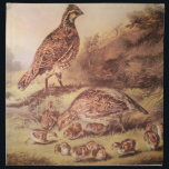 "Quail Family Cloth Napkins<br><div class=""desc"">This is a reprint of the original Currier &amp; Ives lithograph called,  &quot;The Cares of a Family&quot;,  showing a family of quail in a meadow with soft summer light.</div>"