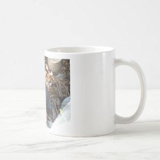 Quail Family Classic White Coffee Mug
