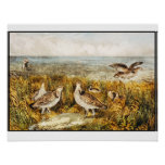 Quail Hunting - Vintage fine Art Poster