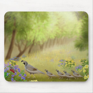 Quail in a Meadow Mousepad