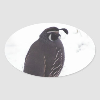 Quail in Snow Oval Sticker