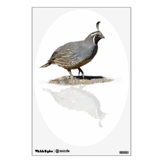 QUAIL REFLECTED WALL DECAL