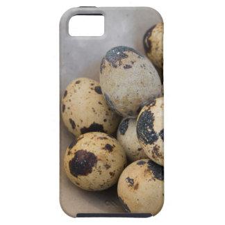 Quails eggs iPhone SE/5/5s case