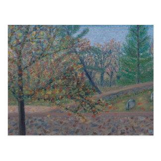 Quaker Cemetery - Waterford VA Postcard