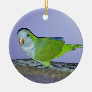 Quaker Parrot Ceramic Ornament