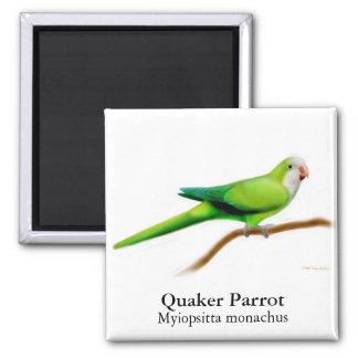 Quaker Parrot Magnet
