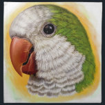 "Quaker parrot realistic painting cloth napkin<br><div class=""desc"">Quaker parrots are also known as monk parakeets. I love their big foreheads, making them look grumpy but cute at the same time. :D This napkin with green quaker is one of favorite choices by customers from my store, so go get one for you or your quaker buddy! Art&#39;s painted...</div>"