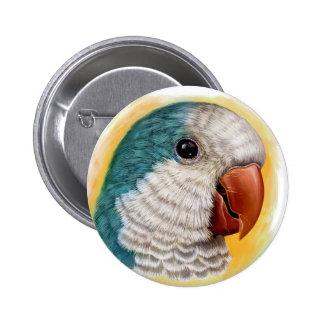 Quaker parrot realistic painting pinback button