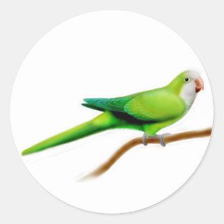 Quaker Parrot Sticker