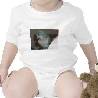quaker parrot baby bodysuits